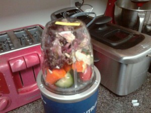 nutribullet-food-frother