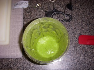 Green Onion Puree